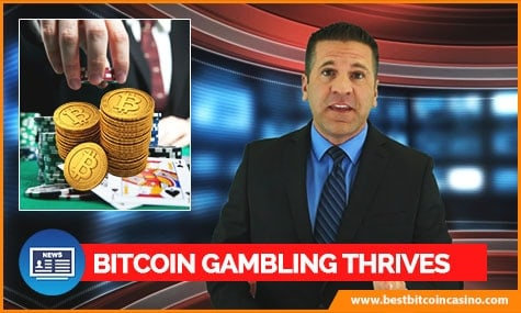 Bitcoin Casino Market Growth
