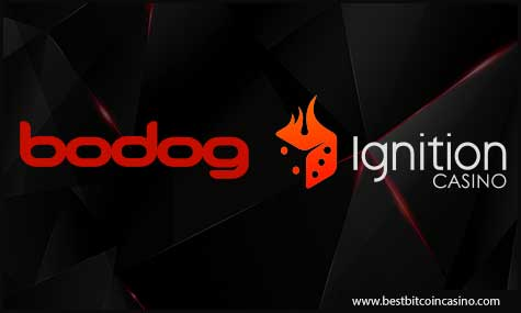 Partner casinos of Betting Partners (Bodog and Ignition Casino) paid almost $550,000 combined payout
