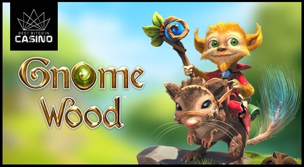 New Gnome Wood Slots Unveiled by Microgaming & Rabcat