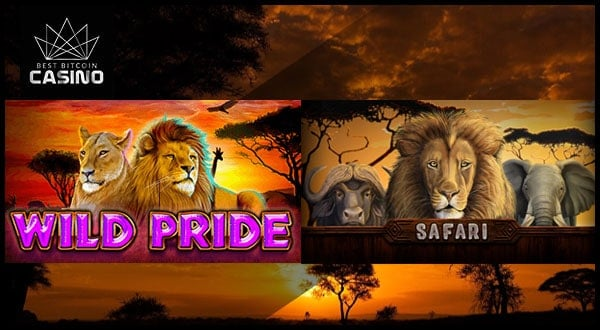 Which Slot Wins: Safari Slots vs Wild Pride Slots