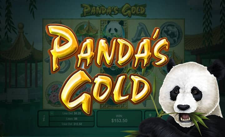 Massive Wins Await Bettors in Panda's Gold by Real Time Gaming